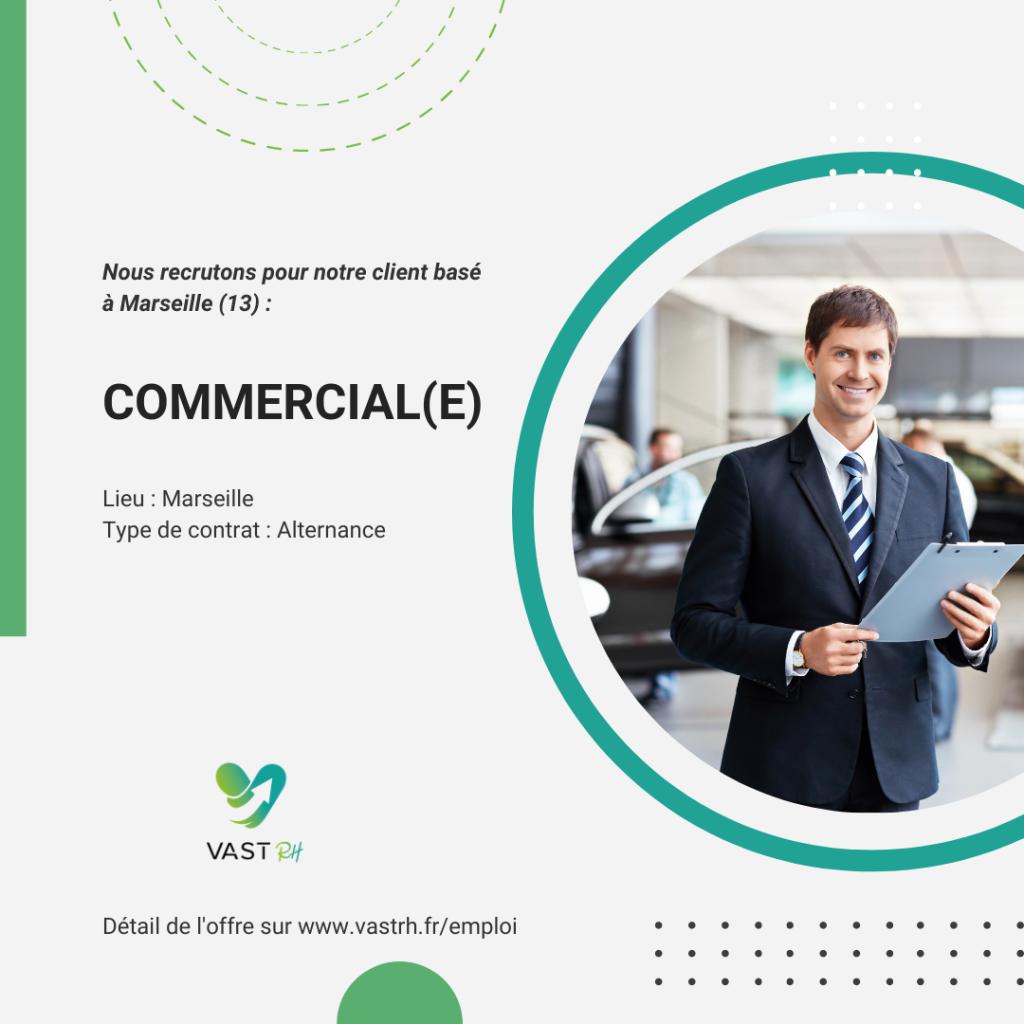 Commercial alternant